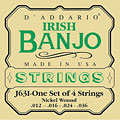 Strings D'Addario J63i Irish Banjo