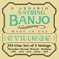 Strings D'Addario J55 5-String Banjo