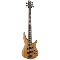 Ibanez Soundgear SRFF4505-SOL « Electric Bass Guitar