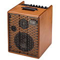 Acoustic Guitar Amp Acus One for Street Wood