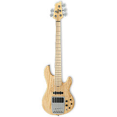 Ibanez ATK815-WNF « Electric Bass Guitar