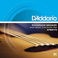 Acoustic Bass Strings D'Addario EPBB170 .045-100