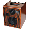 Acus One 5T Wood « Acoustic Guitar Amp