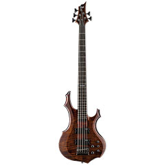 ESP LTD F-155DX WBR « Electric Bass Guitar